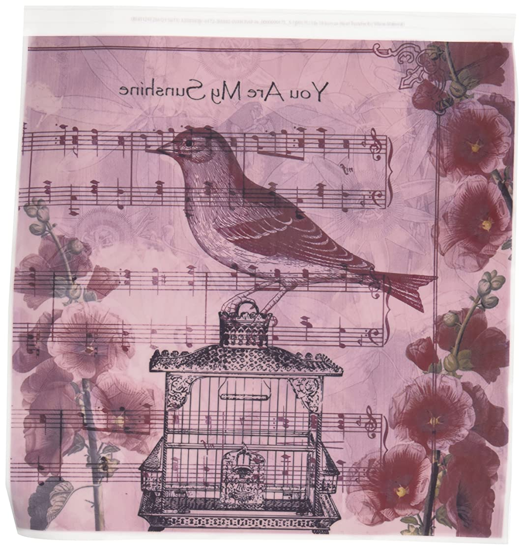 3dRose ht_99175_3 Vintage Hollyhocks Bird with Song You are My Sunshine Iron on Heat Transfer Paper, 10 by 10-Inch