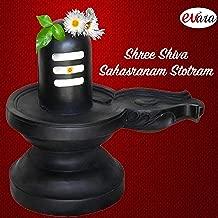 Shree Shiva Sahasranama Stotram