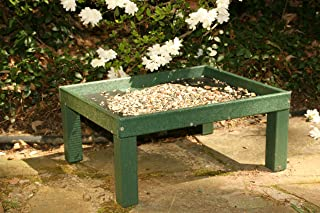 Ground Platform Feeder Green