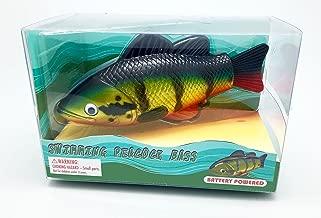 Best rainbow reef swimming fish Reviews