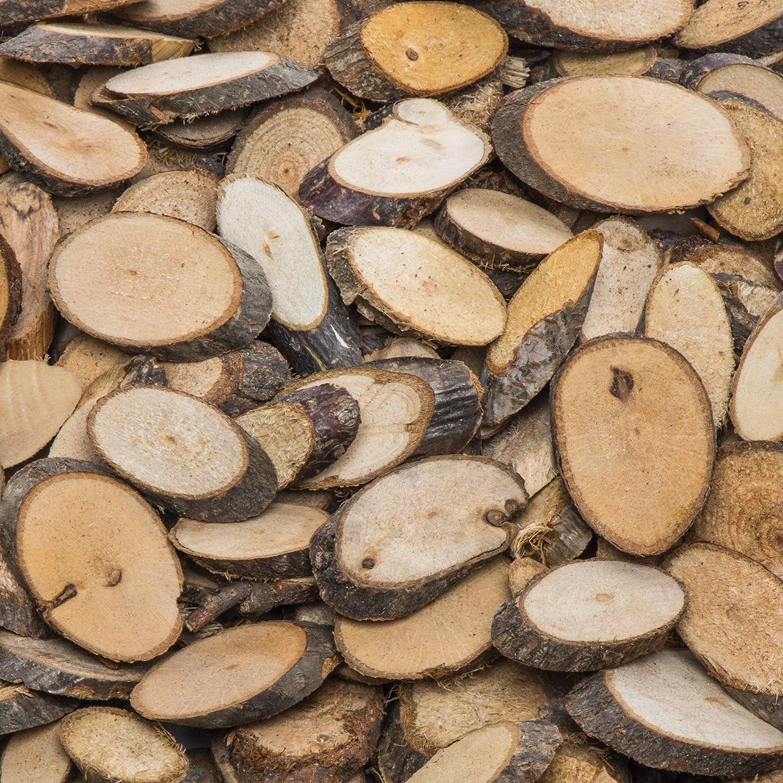Baker Ross Trozos de ramas naturales (Pack de 450)