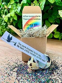 Surprise! Quail Egg Pregnancy Announcement - Rainbow Baby