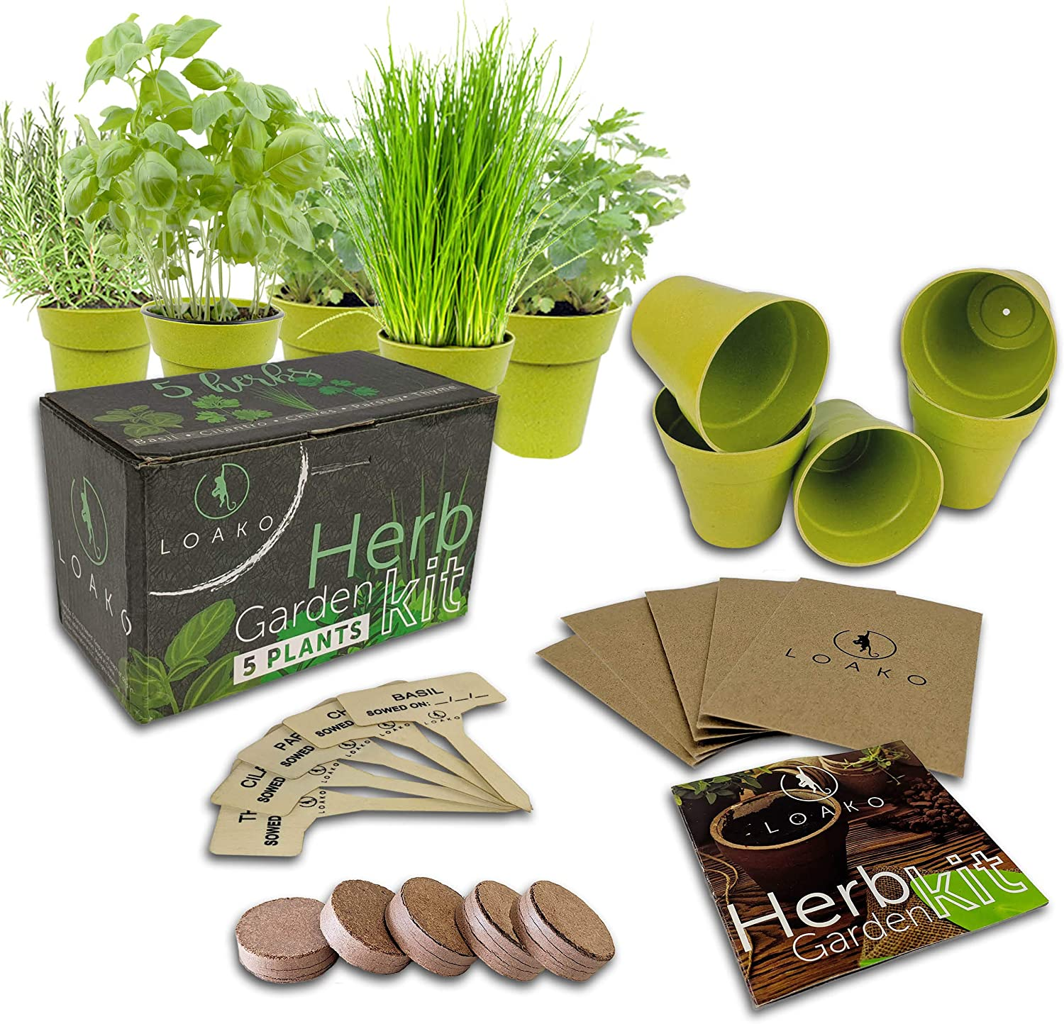 Selling rankings Indoor Herb Easy-to-use Garden Starter Kit - Growing 5 with Seeds B