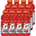 12-Pack Gatorade Thirst Quencher Fruit Punch 20 oz. Bottles
