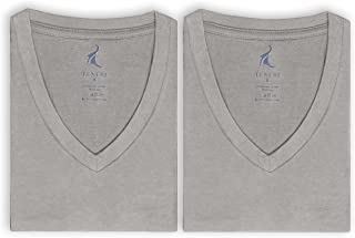Texere Men's V-Neck Luxury Undershirt - Bamboo Viscose 2 Pack Tee for Him (Meio)