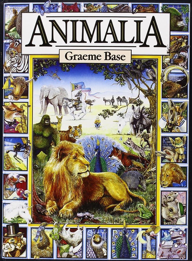 品メッセージ化学Animalia Midi