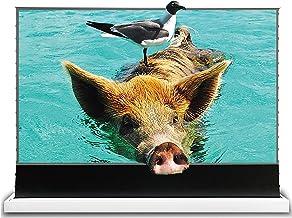 VIVIDSTORM S PRO超短焦点レーザープロジェクタースクリーン、TVホームシアタープロジェクター8K / 3D / UHDホワイトハウジングの電動フロアライジングスのクリーン100インチのアンビエントライトリジェクションスクリーン -...
