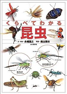 くらべてわかる昆虫 (くらべてわかる図鑑)