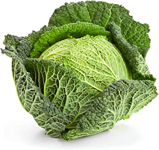 Savoy Cabbage Seeds, 500+ Premium Heirloom Seeds, Best Cabbage for Cooking! Popular!, (Isla's Garden Seeds), Non GMO Organic, 85% Germination Rates, Highest Quality Seeds