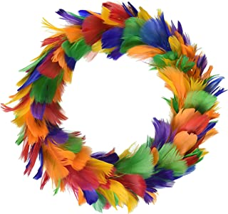 Beistle 57902-RB Feather Wreath, 8-Inch