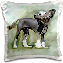 3dRose pc_4254_1 Chinese Crested-Pillow Case, 16 by 16