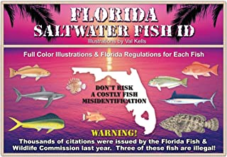 Best florida saltwater fish chart Reviews