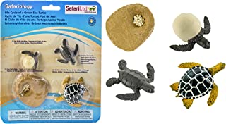 Best sea life models Reviews