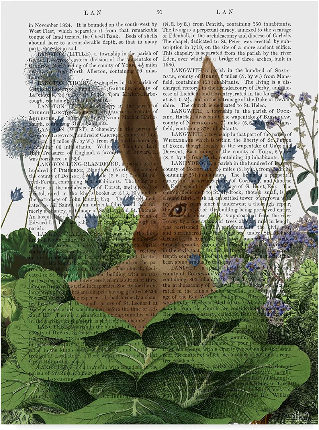 Trademark Fine Art Cabbage Patch Rabbit Text 5 by Fab Funky 5, 14x19Inch
