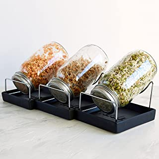 Seed Sprouting Jar Kit - 3 Sprouter Mason Jars with Screen Lids Stands and Trays - Sprout Germinator Set to Grow Your Own Organic Alfalfa Broccoli Microgreens Beans Seeds Sprouts