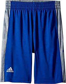 adidas Kids Supreme Speed Shorts (Big Kids)