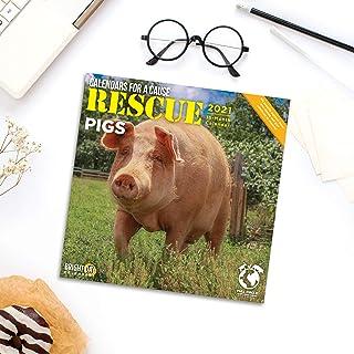 Bright Day Calendars 2021 Rescue Pig Wall Calendar by Bright Day, 12 x 12 Inch, Cute Farm Animals Calendars for a Cause