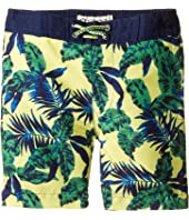 Appaman Kids - Tropical Palms Swim Trunks (Toddler/Little Kids/Big Kids)
