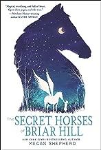 The Secret Horses of Briar Hill