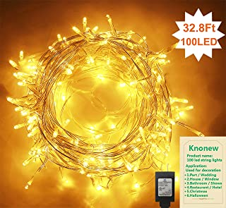 Best led christmas lights 100 count Reviews