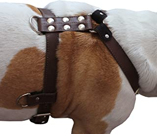 Best dog harness leather Reviews