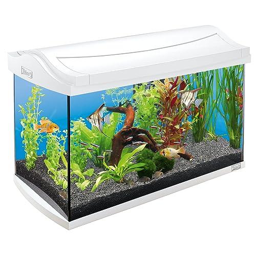 Aquarium 60 Liter Komplettset: Amazon.de