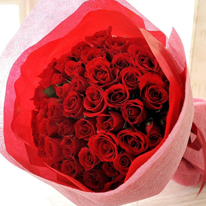 練習した創傷十分バラ50本の花束ブーケ (レッド)