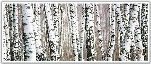JP Londres pan5251ustrip Frozen Invierno Árbol de Abedul Bosque Peel Stick Papel tapiz removible calcomanía Mural de alta resolución, 121,9cm de ancho por 50,2cm alta