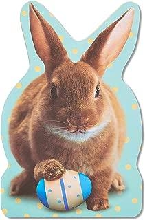 American Greetings Jumbo Bunny Easter Card