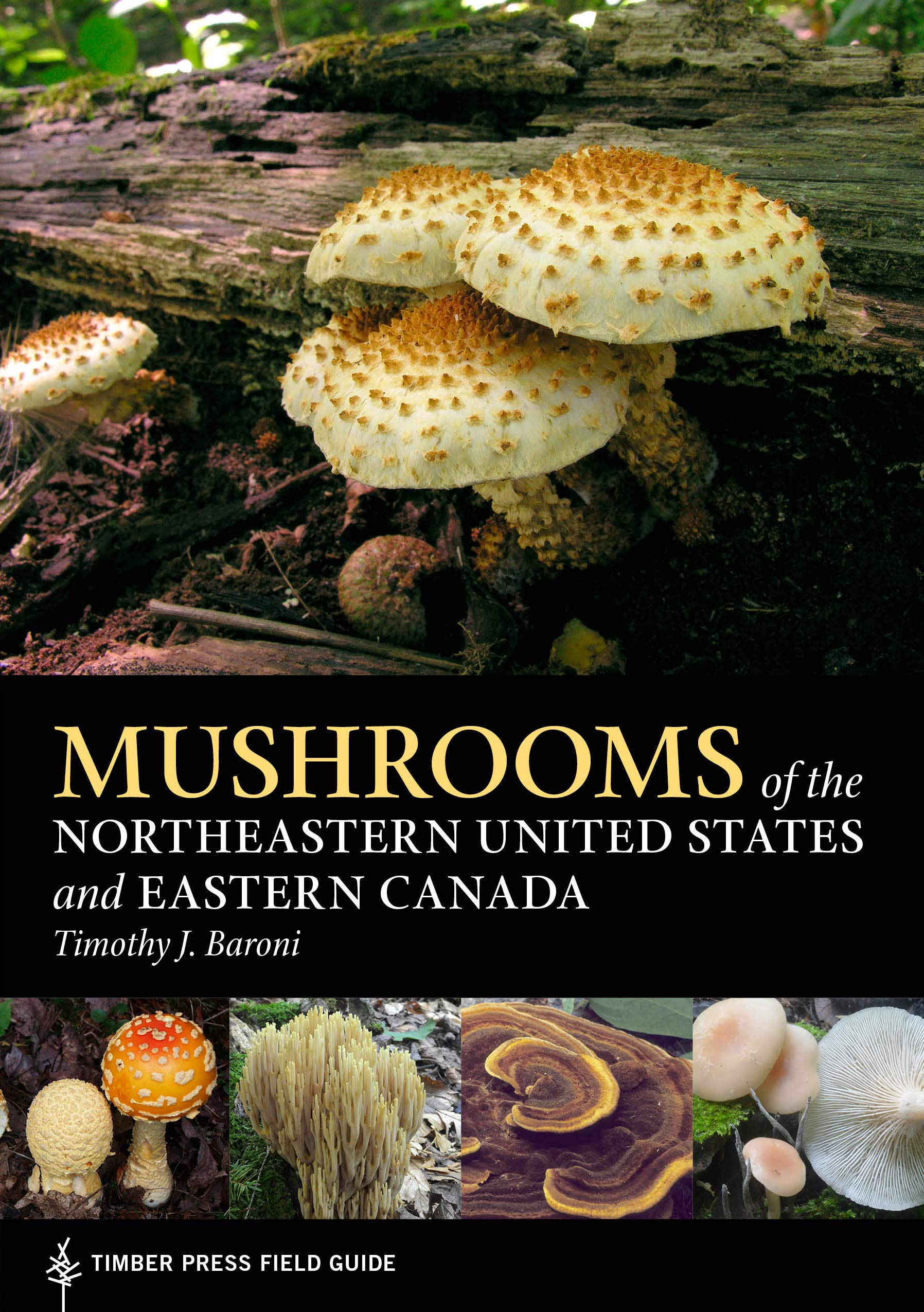 Image OfMushrooms Of The Northeastern United States And Eastern Canada (A Timber Press Field Guide)