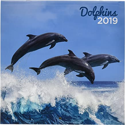 Amazon.es: agenda delfines