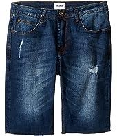 Hudson Kids Hess Cut Off Slim Straight Shorts in Medium Stone Used (Big Kids)