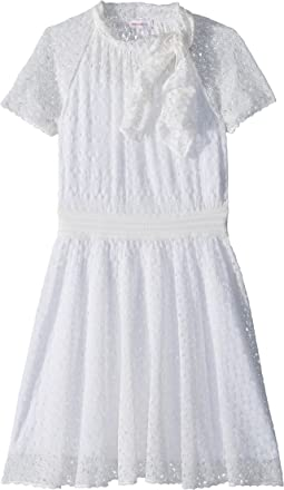 Mini Miss Lace Dress (Big Kids)