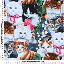 Kittens Of Love Anti-Pill Fleece Fabric By The Yard