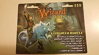 Wizard 101 Evergreen Bundle Prepaid Game Card