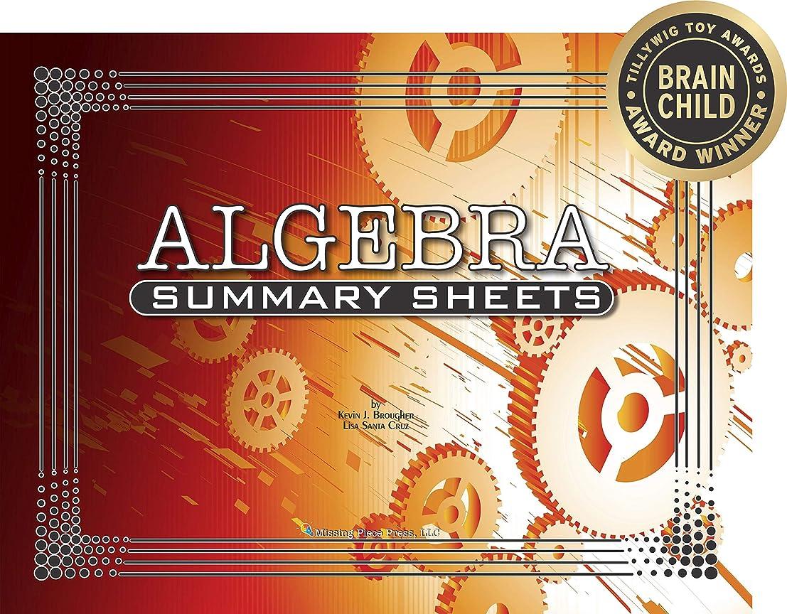 決してリーガン返済Algebra Summary Sheets: Posters to Promote Proficiency (English Edition)