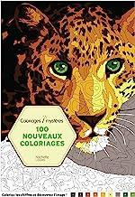 Amazon Fr Coloriage Magique Adulte Broché Livres