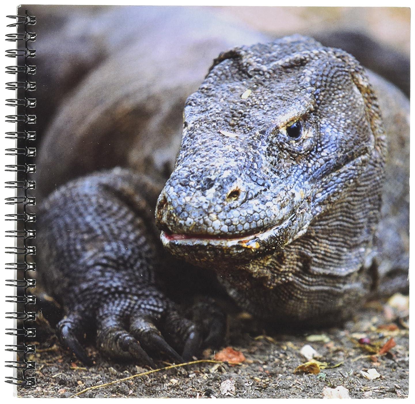 3dRose db_73174_1 Indonesia, Sunda Archipelago, Komodo Dragon Lizard-As11 Jst0015 Jay Sturdevant Drawing Book, 8 by 8-Inch