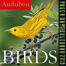 Audubon Birds Color Page-A-Day Desk Calendar 2019 [6