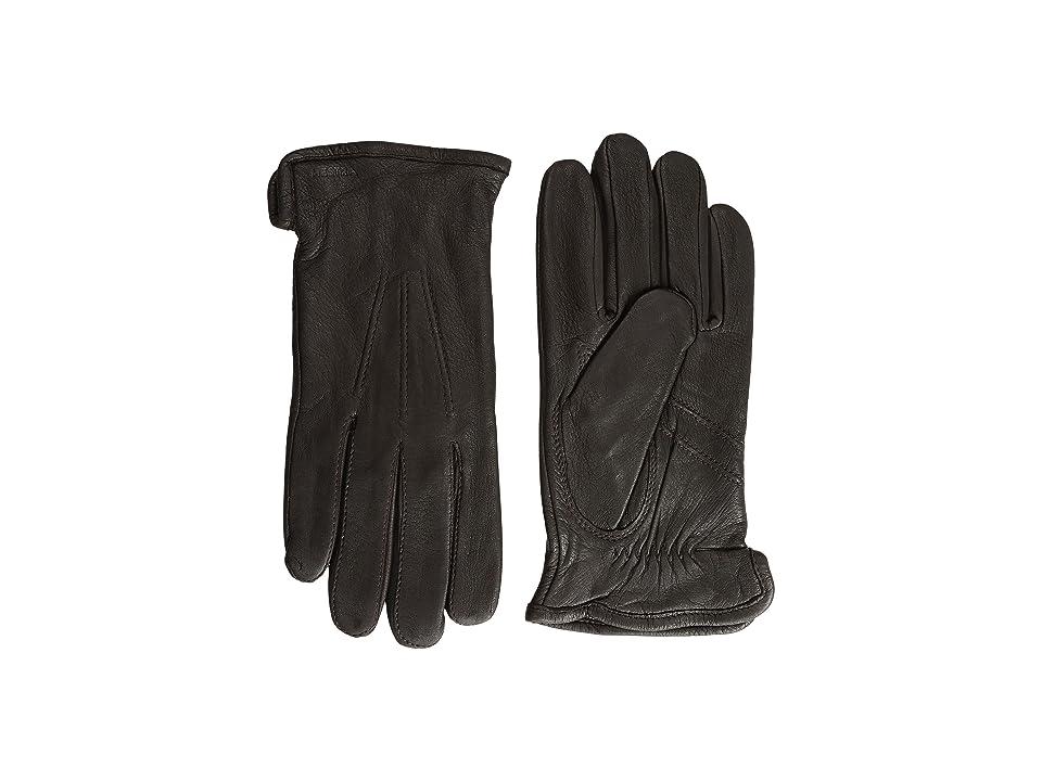 Hestra Andrew (Dark Brown) Ski Gloves