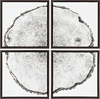 Kate and Laurel Sylvie Tree Rings Framed Canvas Art Set by F2 Images 4 Piece Silver