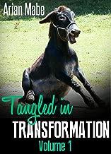 Tangled in Transformation: Volume 1