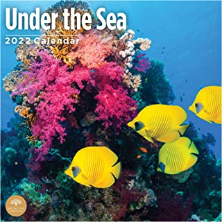 2022 Under The Sea Wall Calendar by Bright Day, 12 x 12 Inch, Ocean Animals Fish Coral Reefs Sharks Whales Sea Turtles