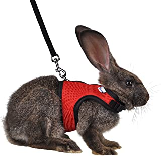 Niteangel Adjustable and Breathable Mesh Harness with Lead for Rabbit (S, Red)