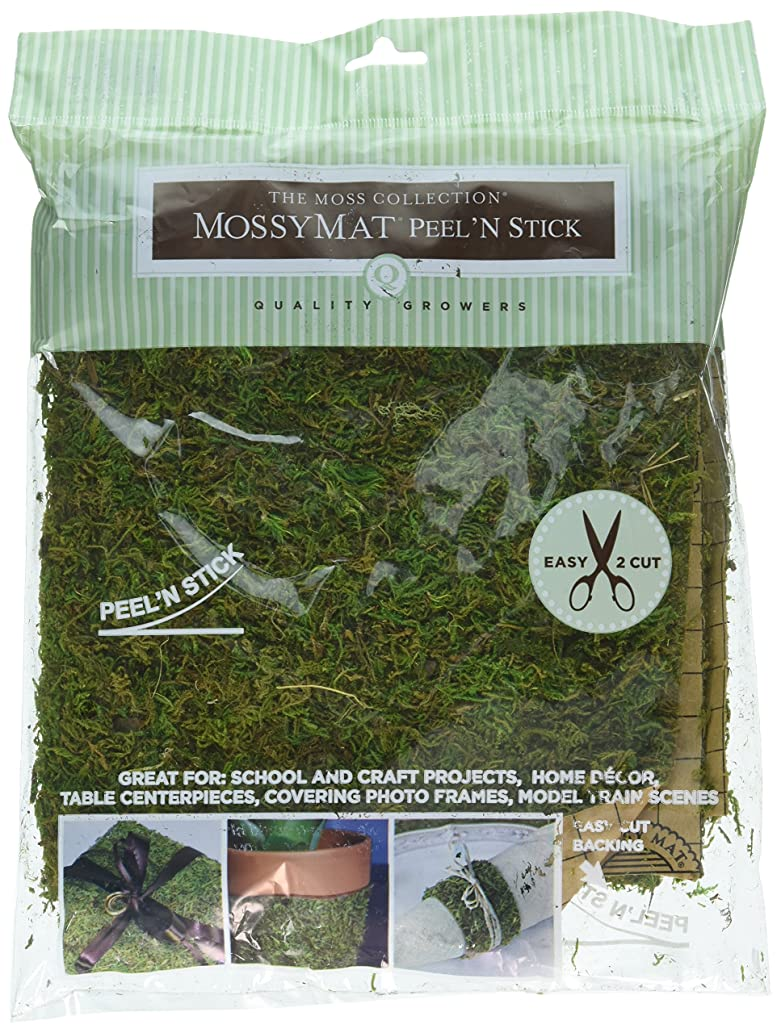 Darice 10014298 Peel and Stick Moss Sheet