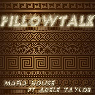 Pillow Talk (Extended Warzone Club Mashup)