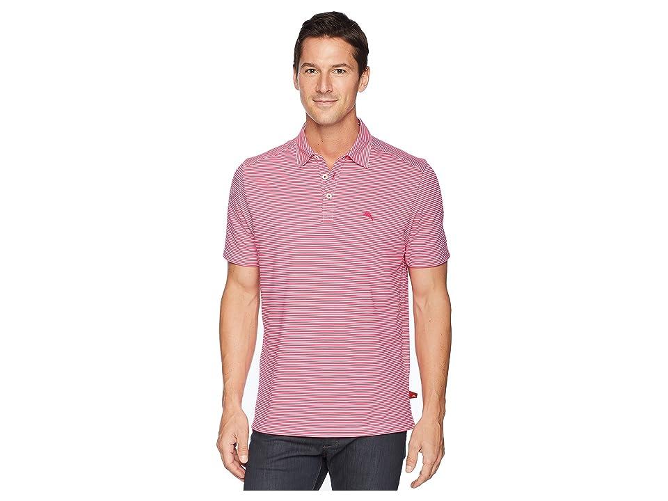 Tommy Bahama Marina Marlin Polo Shirt (Bright Rose) Men