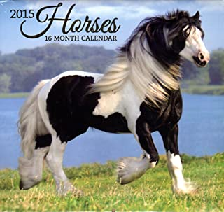 Horses - 2015 16 Month Calendar + Free Bonus 2015 Magnetic Calendar