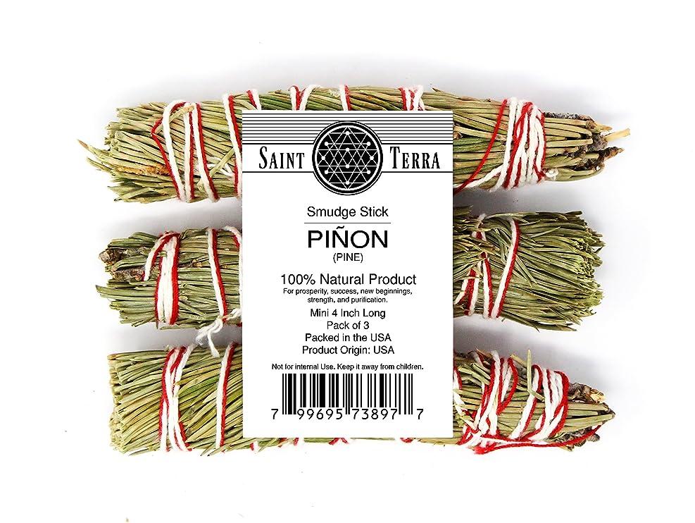 特定の意志刈るSaint Terra Pack of 3?Pinon Pine smudge stick ( 4インチ)の新しいBeginnings、強度、繁栄、成功、浄化。