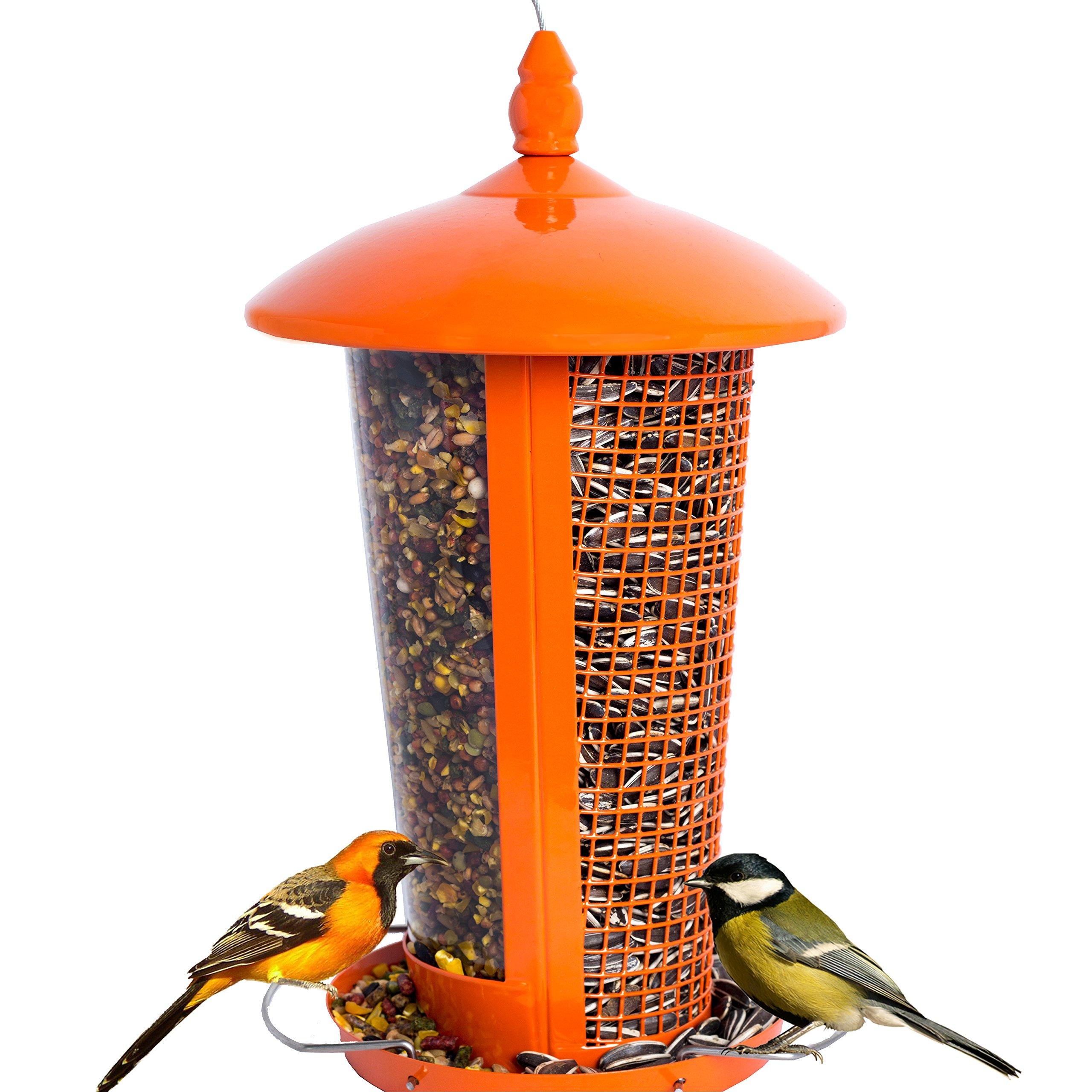 CHILIPET El Mejor Alimentador de Aves Silvestres para Decorar tu Casa o Jardín, Diseñado para Todo Tipo de Semillas, Cacahuetes y Frutas Secas, Comedero Decorativo para Exterior.: Amazon.es: Jardín